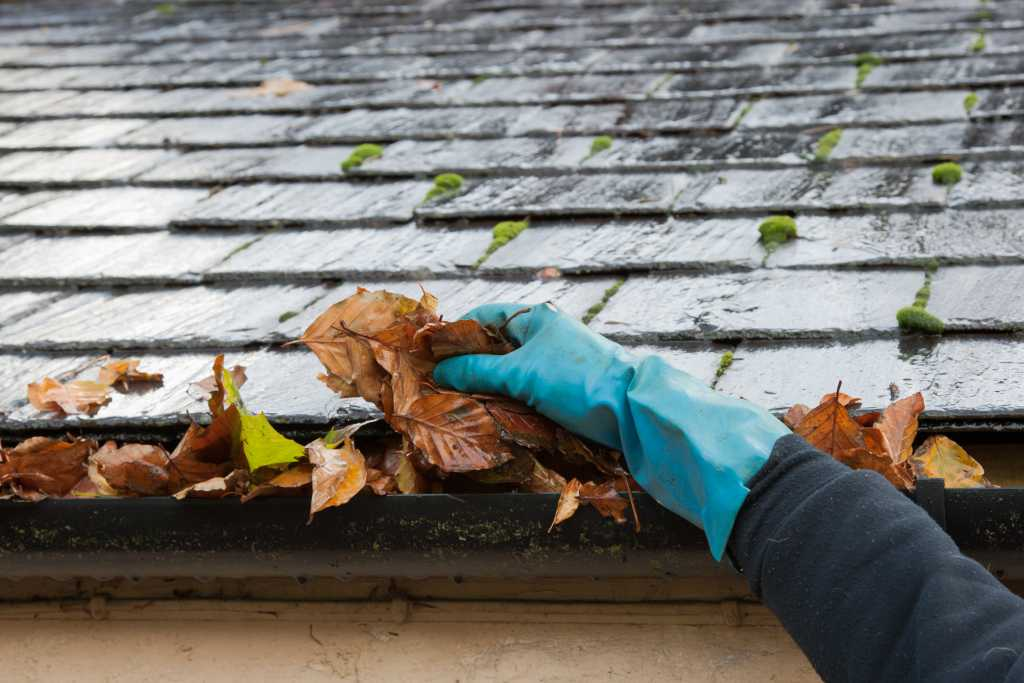 man removing leaves from gutters